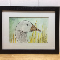 White goose - original painting, pen, ink and watercolour