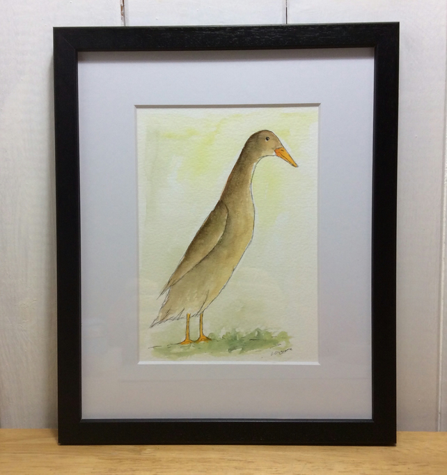 Brown runner duck - original pen, ink and watercolour