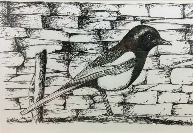 Magpie - original pen and ink drawing
