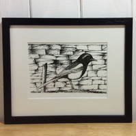 Magpie - original pen and ink drawing of bird
