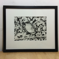 Robin - original pen and ink drawing of this delightful little bird - framed