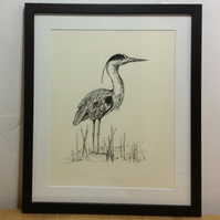 Pen and Ink framed original of Heron - Just Waiting....