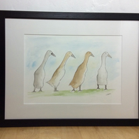 Off for a walk - original watercolour, pen and ink of runner ducks