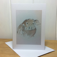 Pig - blank greeting card or notelet