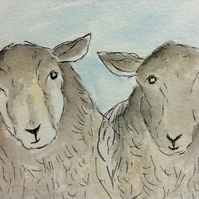 Good morning! - signed print of sheep