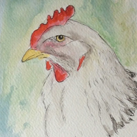 Hello! - signed print of white chicken