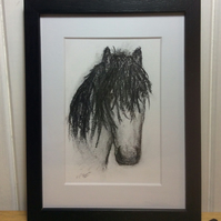 Horses head - charcoal drawing