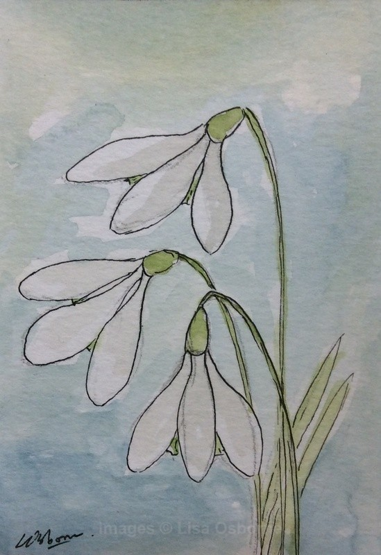 Snowdrops - original watercolour, pen and ink - ACEO