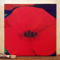 Poppy - acrylic on canvas. Flower.