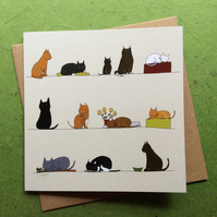 Cats. Greetings card. Blank inside. Pets
