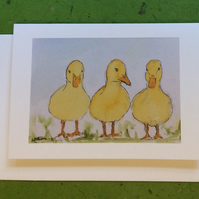 Ducklings - greetings card. Blank inside.