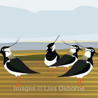 Lapwings. Signed print. Digital illustration. Coast. British birds. Wildlife