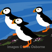 Puffins. Signed print. Digital illustration. Coast. Wildlife