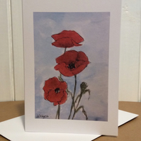 Poppies - greetings card - blank for your own message.