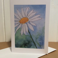 White daisy - greetings card - blank for your own message