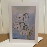 Snowdrops - greetings card - blank for your own message