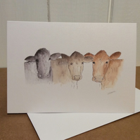 Cows - greetings card. Blank inside for own message.