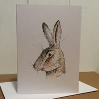Surprised hare - greetings card. Blank inside.