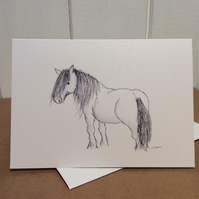 Highland pony card - greetings card. Blank inside.