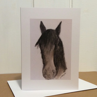 George - greeting card of horse. Blank inside.