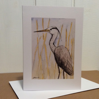 Heron - greetings card - blank for your own message. Birds.