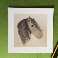 Horses head - print from drawing of horse.