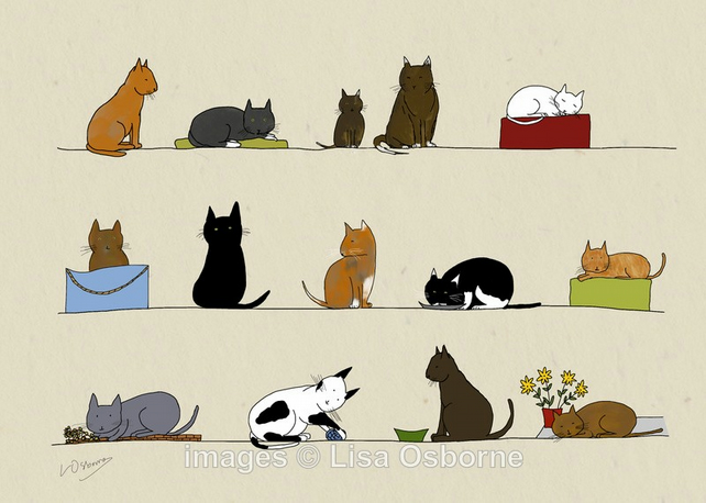 Cats. Signed print. Digital illustration. Pets. Animals