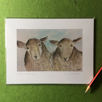 Good morning! - Signed print. Sheep. Farm animals.