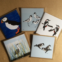 Pack of 5 greetings cards - blank inside - Birds