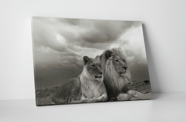 LION LIONESS BLACK AND WHITE ANIMALS LOVE CANVAS WALL HANGING IMAGE ART IMAGE