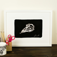 Bird skull Giclee Print - Pen and Ink wall art print - Macabre - occult.