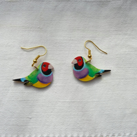Gouldian finch earrings