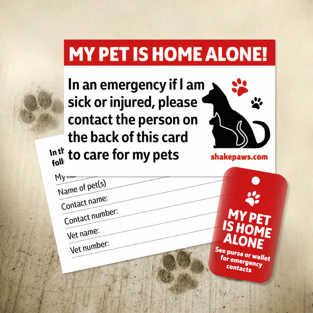 Shake Paws' Home Alone Pet Safety Kit is a card and fob, keyring set – be safe!