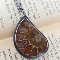 Fossilized Ammonite Pendant, sterling silver, bezel, fossil