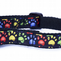 Small Black and Multicoloured Handmade Dog Collar