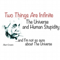 T-Shirt: ALBERT EINSTEIN: Infinite Stupidity