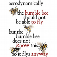 T-Shirt: BUMBLE BEE: Aerodynamics