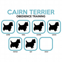 T-Shirt: CAIRN TERRIER Obedience Training - All Dog Breeds Available LazyCarrot