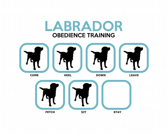 T-Shirt: LABRADOR Obedience Training - All Dog Breeds Available LazyCarrot