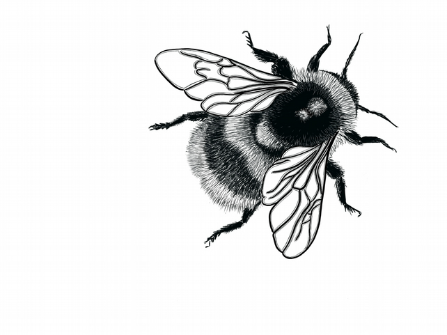 Bumble Bee Rubber Stamp - SMALL Fluffy Bumblebee - Bee - Bumble Bee - Bumblebee