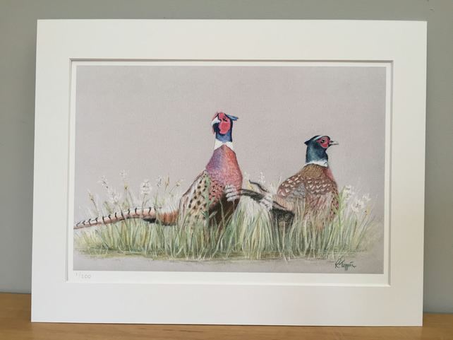 Limited Edition Giclee Print of Two Pheasants
