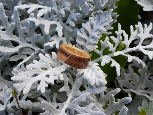 Zebrano and American walnut bentwood ring
