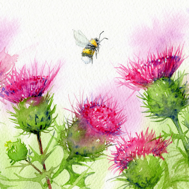 Thistles - Greetings Card