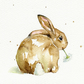 Baby Bunny - Greetings Card