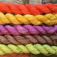 AUTUMN MINIS, Mini skeins, hand dyed yarn, hand dyed wool, merino, sock yarn, dk