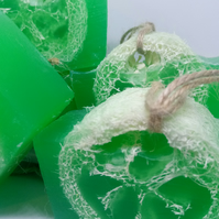 Soap on a Rope with Tea Tree, Grapefruit and Lime Essential Oils and Loofah