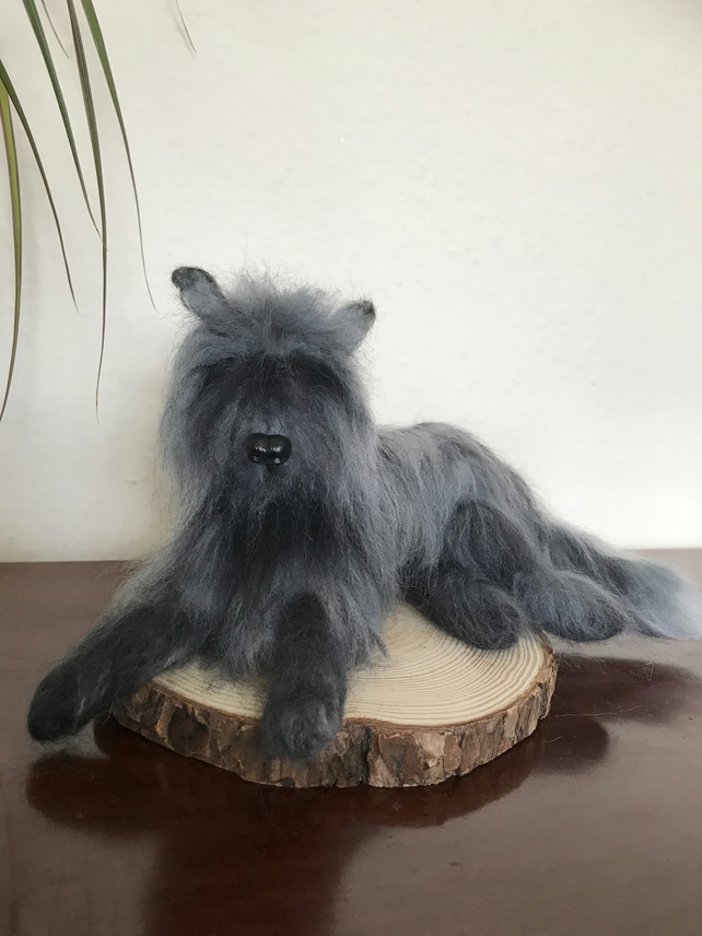 Edward the Needle felted Woofy Cat. Head of dog body of a cat.
