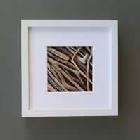 Driftwood Picture in box frame