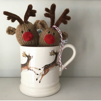 Red Nosed Reindeer Decoration