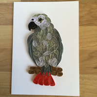 African Grey Card, Exotic Pet Bird with Red Tail Feathers, a talented mimic.
